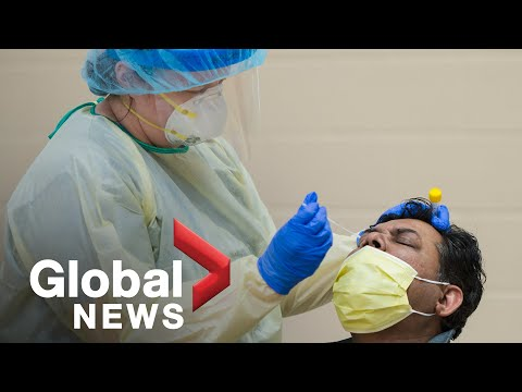 Coronavirus outbreak: New Brunswick doctor blamed for province's latest outbreak