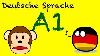 Goethe Zertifikat A1 – Start Deutsch: Mündliche Prüfungen | Aktueller Zertifikat Deutsch Test A1