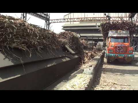 A walking tour of Chalthan Sugar Factory, Chalthan Village Road, Chalthan, Gujarat, India