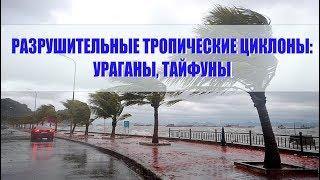 Разрушительные тропические циклоны: ураганы, тайфуны
