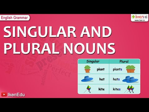 English Grammar -- Learn Singular and Plural Nouns