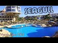 Seagull Beach Resort 4* Hurgada 2018