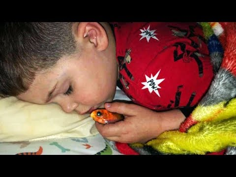 Boy Scared Of Dark Sleeps With Pet Goldfish, But Wakes Up To Horrifying Surprise