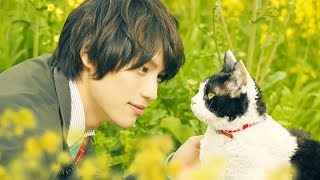 福士蒼汰と愛猫ナナの物語に思わず涙… 映画「旅猫リポート」予告映像が公開