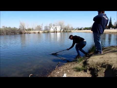 Fishing At Truxton Lake Bakersfield CA Part 2 Double Trouble!!!!
