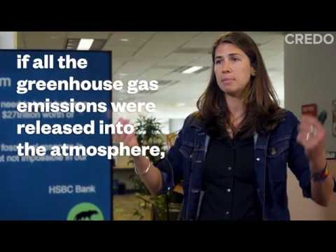 Rainforest Action Network shares the truth about banks and oil pipelines