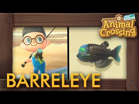 Animal Crossing: New Horizons - How To Catch Barreleye (New 15,000 Bells Fish)