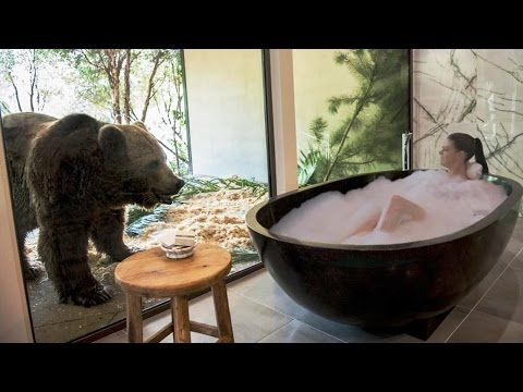 Sleeping with Lions, Tigers and Bears at Jamala Wildlife Lodge, Canberra, Australia, 5 stars hotel