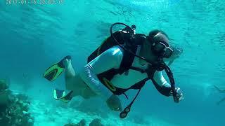 Карибское море ,дайвинг!