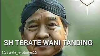 Gambar cover Lagu TERJAL - SH TERATE wani tanding