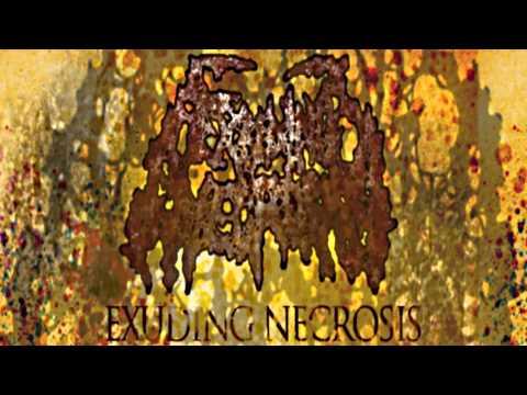 Exuding Necrosis *NEW DEMO SONG* NO VOCALS, NO GOOD PRODUCTION. PORCO DIO.