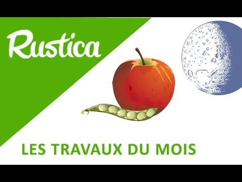 Calendrier Lunaire Septembre 2020 Rustica.Calendrier Lunaire Que Faire Au Jardin En Jour Graines Et Fruits