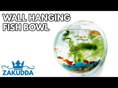 Super Cool Wall Hanging Fish Bowl