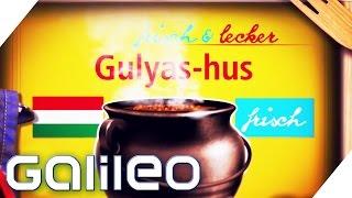 Produktion von Gulaschsuppe | Galileo | ProSieben