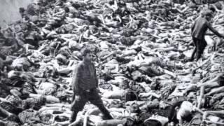 Heinrich Himmler- A.P.Euro Project