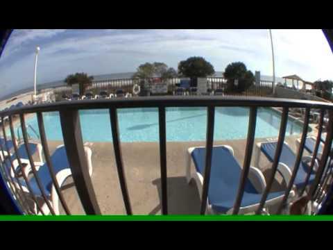 Palmetto Shores Resort In Myrtle Beach Is Now Pet-Friendly!