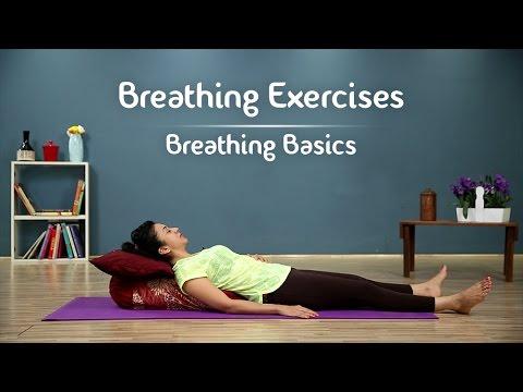 Pranayama An Introduction | Breathing Basics | Yoga With Aj