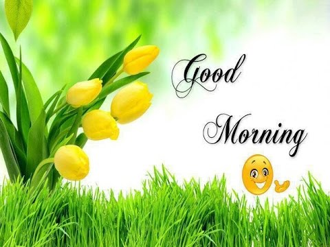 Best 6 Funny Good Morning Wishes, Cards, Sms, Ecards,Best Morning ...