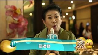 Video Happy Chinese New Year 2017 - Jin Yin Ji 金银姬 download MP3, 3GP, MP4, WEBM, AVI, FLV November 2017