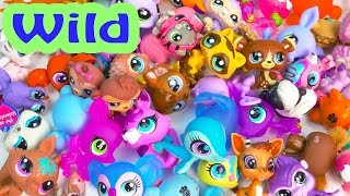 LPS Collection Tour Haul Video Bobblehead Littlest Pet Shop Wild Animals Cookieswirlc Part 4 Toys