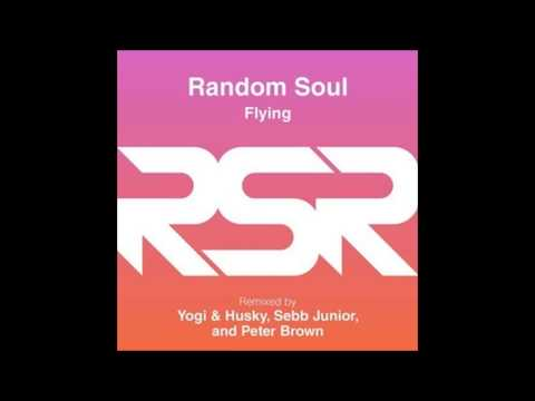 Random Soul - Flying (Peter Brown Remix)