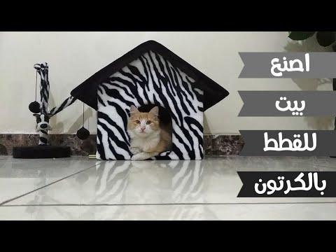 كيف تصنع بيت للقطط بالكرتون Diy Cardboard Cat House Youtube