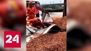 В Китае водитель едва не погиб в каменной ловушке - Россия 24