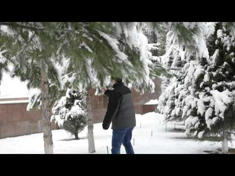 Tashkent happy Life. Snowing