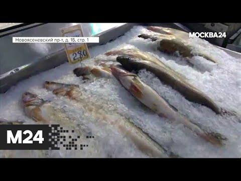 """""""Городской стандарт"""": мусорная рыба под видом деликатеса - Москва 24"""