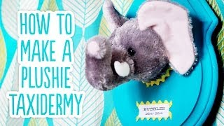 DIY Stuffed Animal Taxidermy