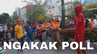 Gambar cover NGAKAK POL!!! ANAK KECIL JOGET NYA LUCU BANGET-PAMER BOJO-ANGKLUNG CAREHAL