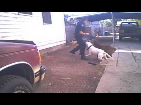 Graphic Content: Nampa police release video of dogs attacking officer prior to shooting