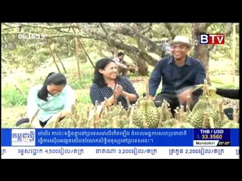 Durian Farming in Cambodia   BTV Cambodian Agriculture News   YouTube