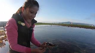 Hái rong biển + bắt cua Gặp anh cảnh sát kiểm tra | Cockle & seaweed salad/ Sweet & sour crab #15