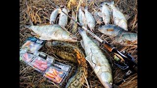 ОСЕННИЙ ЖОР В САМОМ РАЗГАРЕ Рыбалка 2021 Рыбалка в Казахстане