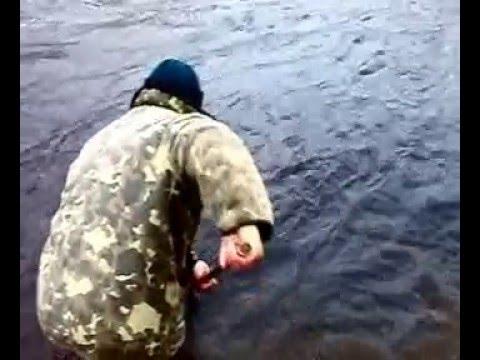 форум рыбалка мурманск корюшка имандра