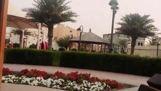 Love QATAR ❤