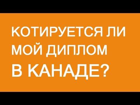 котируется диплом в казахстане Мти котируется диплом в казахстане