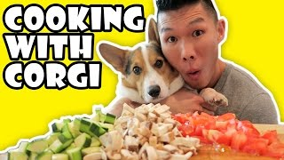 COOKING WITH CORGI DOG || Life After College: Ep. 520
