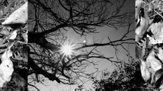 Mel Torme   Autumn Leaves live 1957
