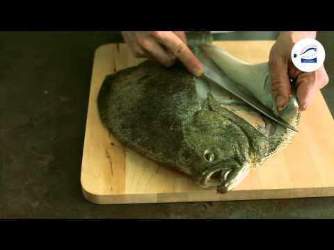 Technique De Cuisine : Lever Les Filets D'un Turbot