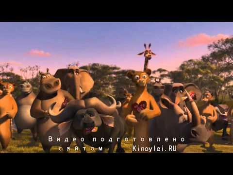 Мадагаскар мультфильм день святого валентина
