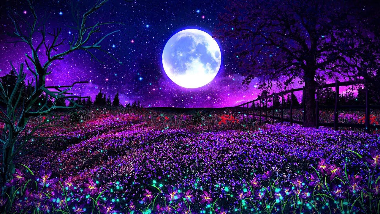 Beautiful Night 💜 Deep Sleep Music 528Hz   Soothing Sleeping Music   Relaxing Healing Sleep Therapy