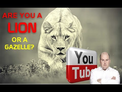 Which one are you? the Lion or the Gazelle. ... by Francois le Roux