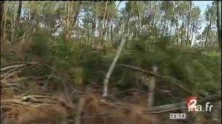 Landes : la forêt sous la surveillance des pompiers