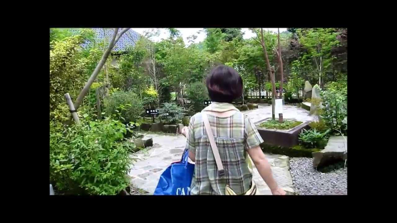 御池の湯 宮崎県の家族風呂 - YouTube