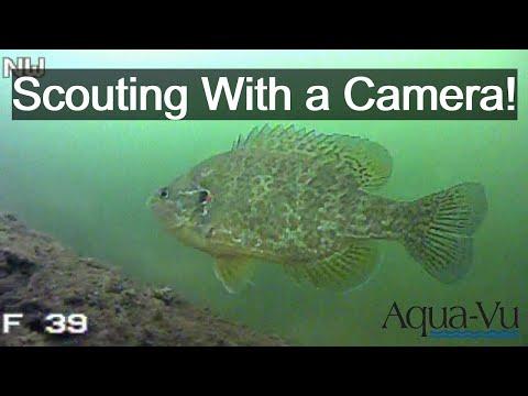 Using An Underwater Camera To Find Fish! [Underwater Camera]