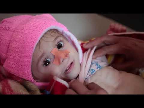 Disease outbreak in yemen