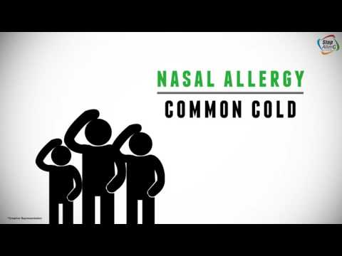 What is Nasal Allergy