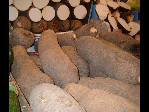 FARMERS MARKET: NIGERIA BEGINS YAM EXPORT